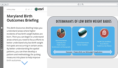 Birth Outcomes Briefing | ArcGIS Solutions for State Government